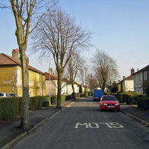 All the trees will be taken down as it is becoming impossible to use the pavements. - 19th March 2009 - Whitecrook, Clydebank