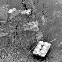 Rubbish in the canal at Dalmuir. - 8th March 1980
