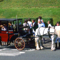 Vintage horse and carriage in Parkhall. Clydebank Centenary Celebrations 1986 - photo by Sam Gibson