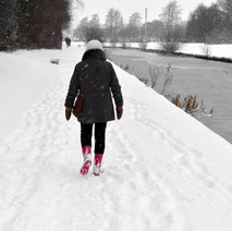 A walk along the Forth & Clyde Canal, before the 'Beast from the East' storm hit Clydebank. 28th February 2018