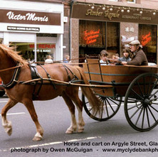Horse and Cart on Argyle Street - May 1986