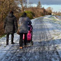 A winter walk along the Forth & Clyde Canal at Linnvale/Whitecrook. 31st January 2015