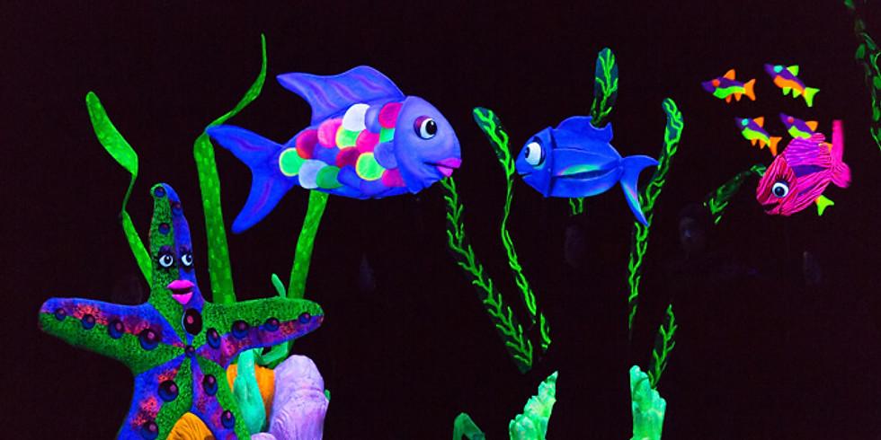 Rainbow Fish - Kindergarten