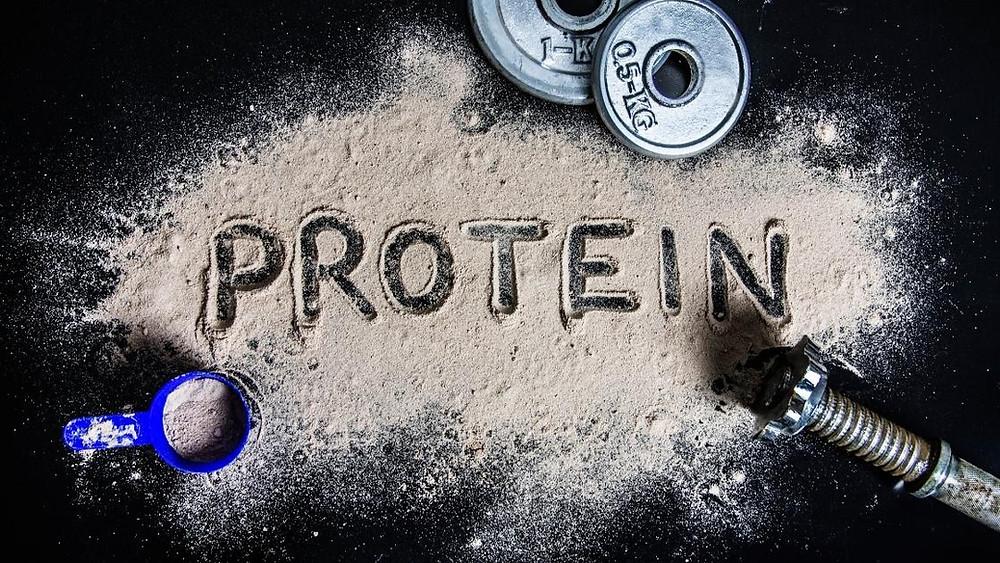 orgain vs Vega vs garden of life protein supplement.