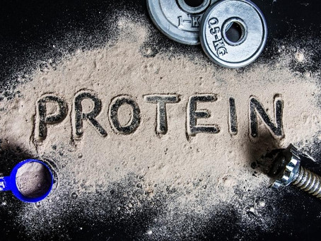 Orgain Vs Vega Vs Garden of Life Protein Supplement [Ultimate Guide]