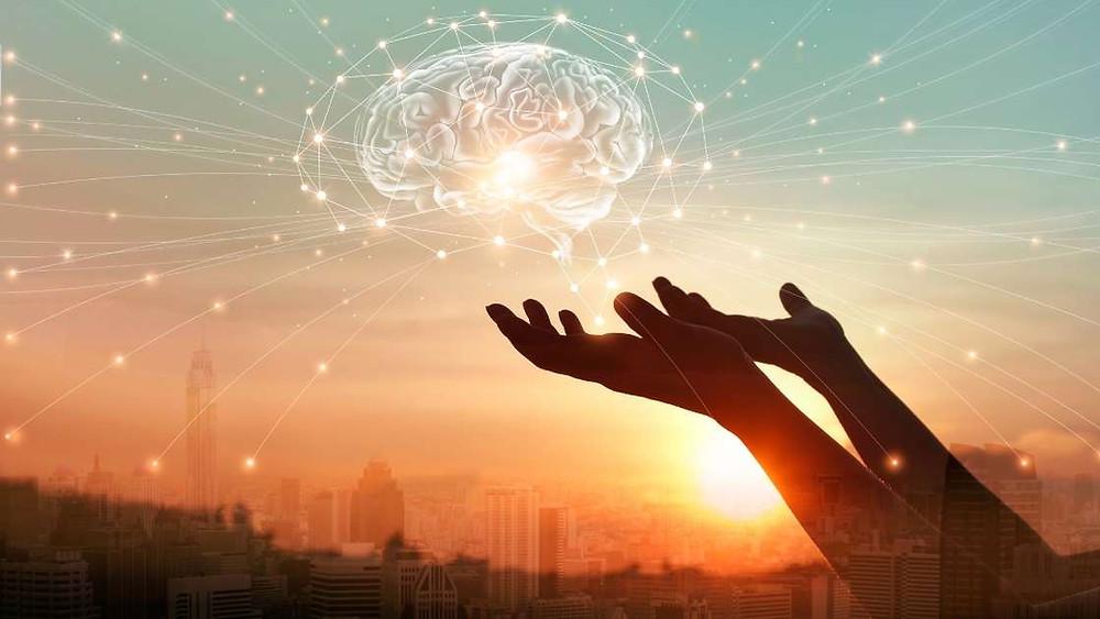 piracetam effects the brain