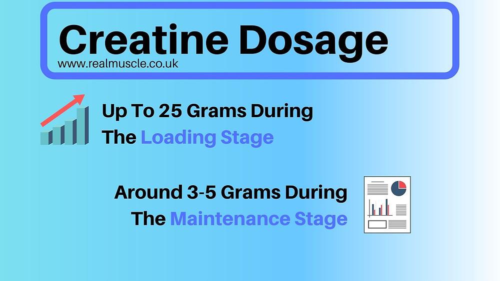 creatine dosage infographic