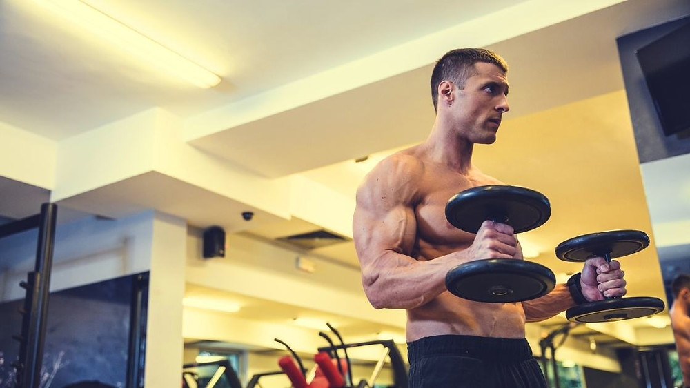 benefits of the hammer curl