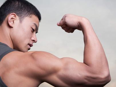 Does Ursolic Acid Build Muscle? (Explained)