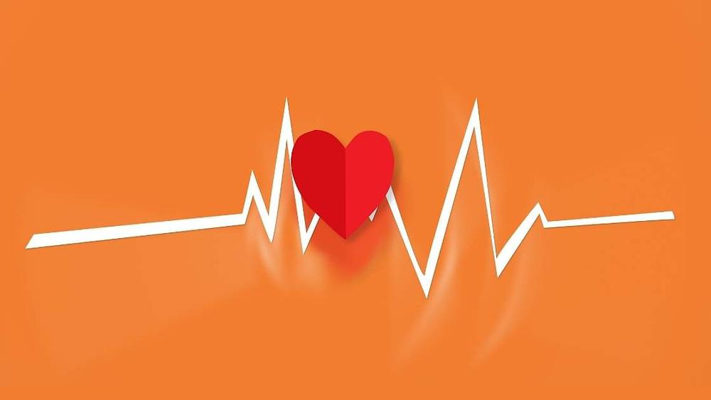 choline heart health