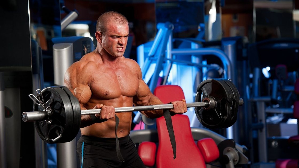 benefits of the bicep curl