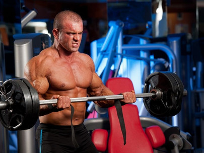 How to Do the Bicep Curl [Exercise Guide]