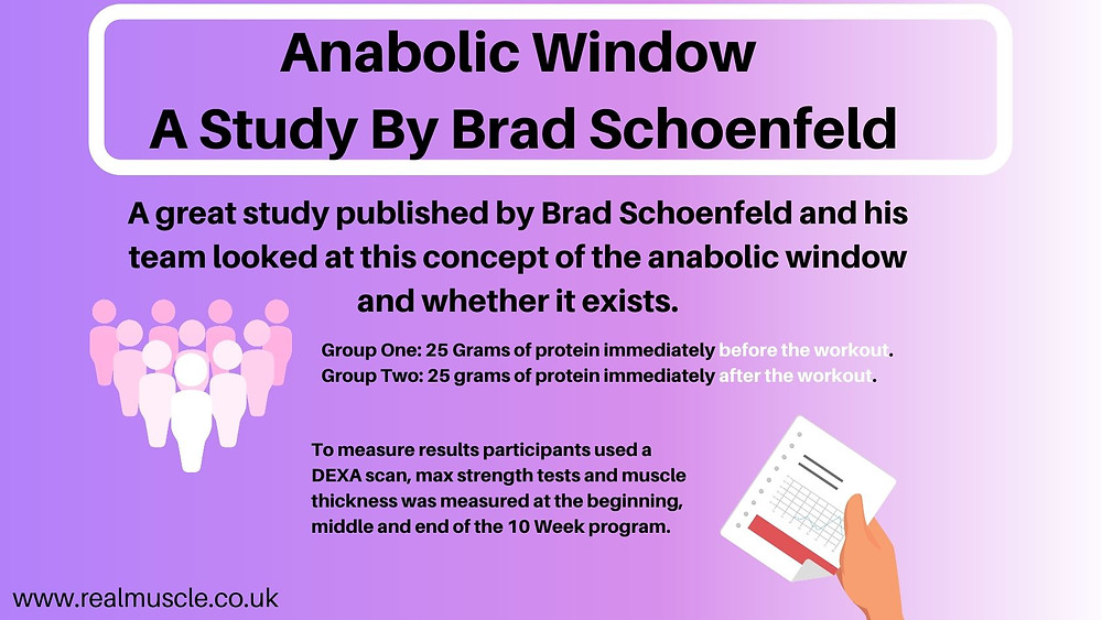 anabolic window infographic