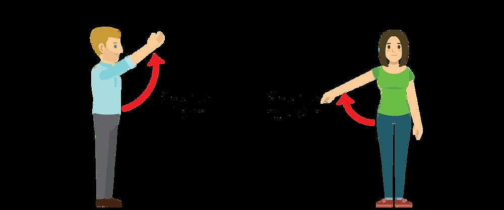 shoulder abduction and flexion