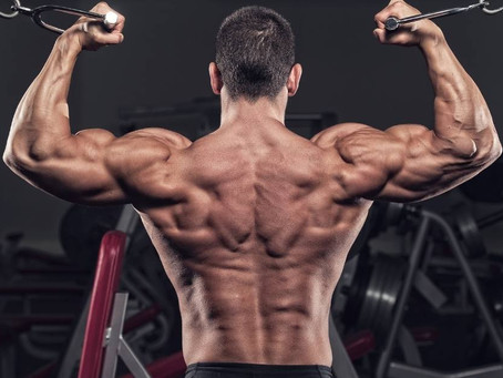 Cable Curl vs Dumbbell Curl vs Barbell Curl [Full Guide]