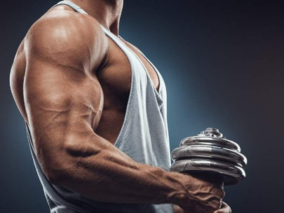 What's The Easiest Muscle To Grow? [Solved]