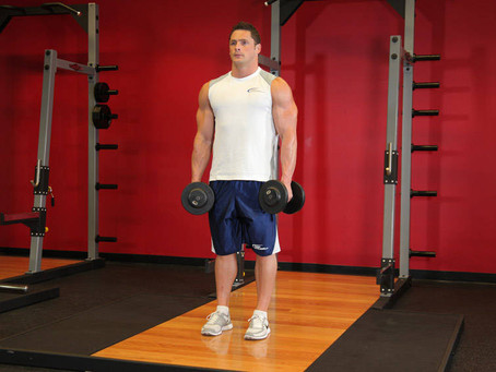 Dumbbell Shrugs | The Go To Traps Exercise