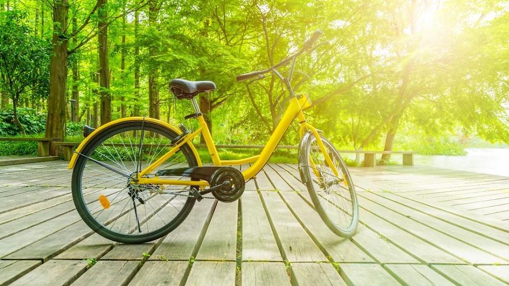 best outdoor bikes
