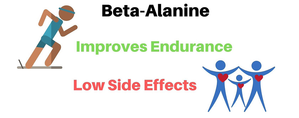 beta alanine supplement