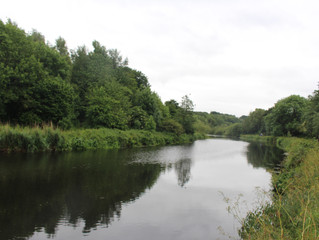 Cleaning the Lagan Towpath