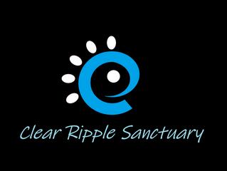 Clear Ripple Sanctuary