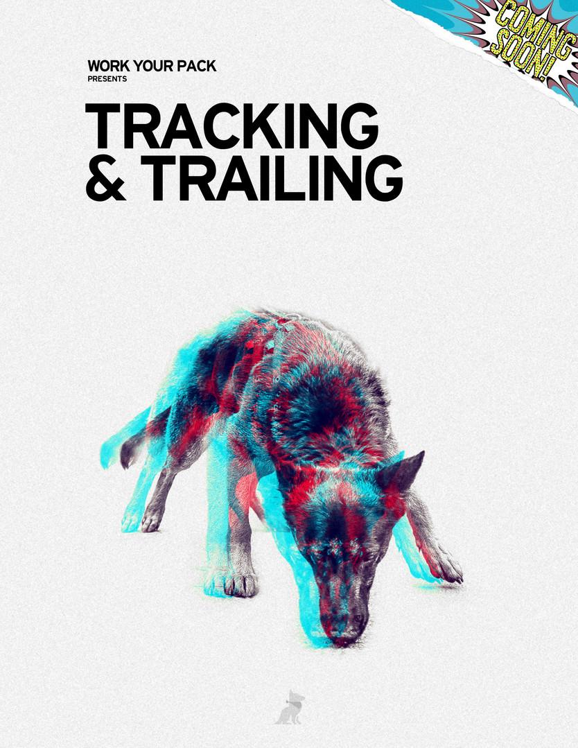 Tracking & Trailing
