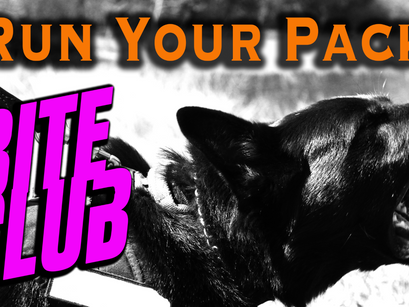 Announcing the RYP Bite Club