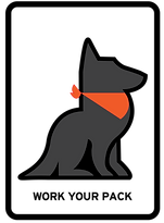 Puppy Training Videos. Dog training videos.
