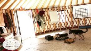 Clearing Backpacks in the Yurt