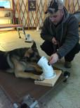 Teaching Axel