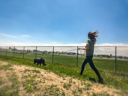 Track Smashin Colorado