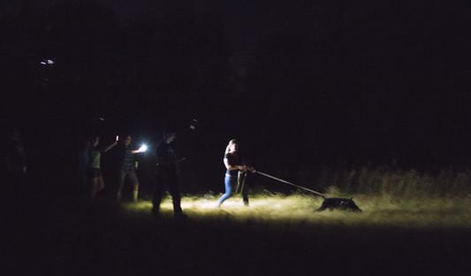 Night Tracking
