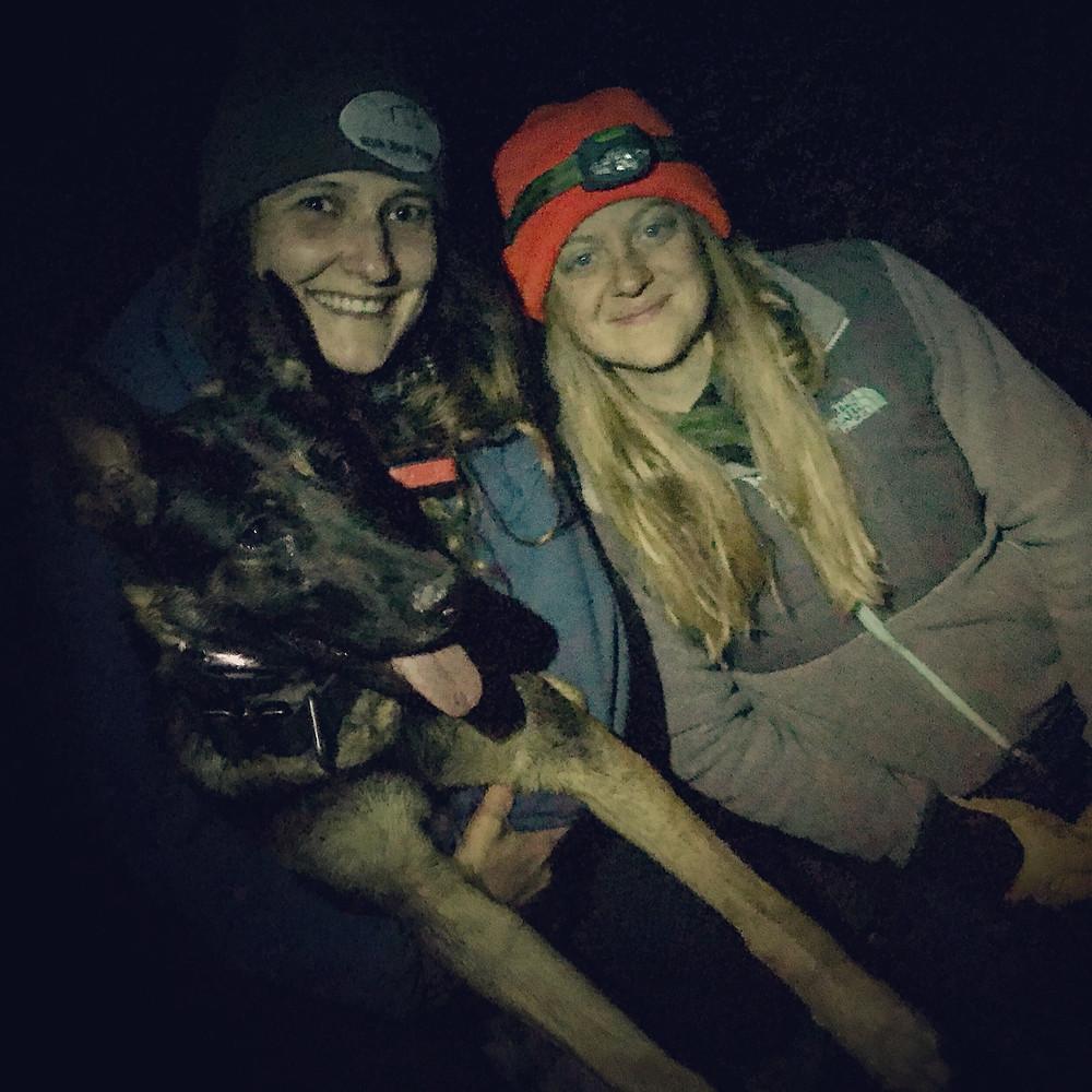 tracking dog, sar dog, german shepherd, run your pack, run your pack tracking club
