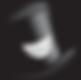 madcap logo.png