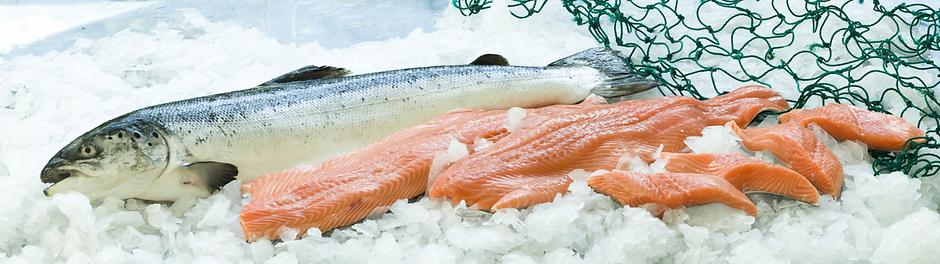 salmon-slide.png