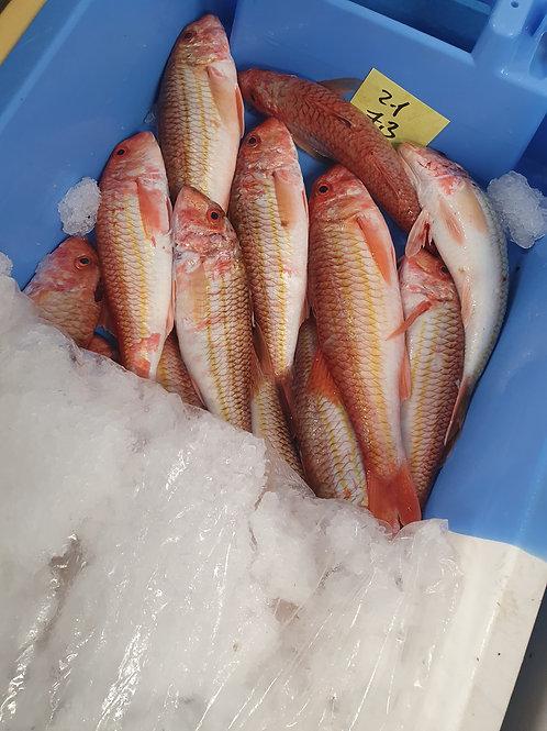 poissonnerie-écailler-traiteur- plateaux de fruits de mer- huîtres- crustacés-la-passion-du-gout-rouget-barbet