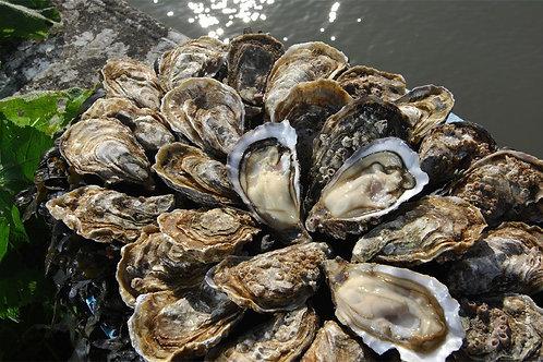 poissonnerie-écailler-traiteur- plateaux de fruits de mer- huîtres- crustacés-la-passion du gout-huîtres-perles blanches