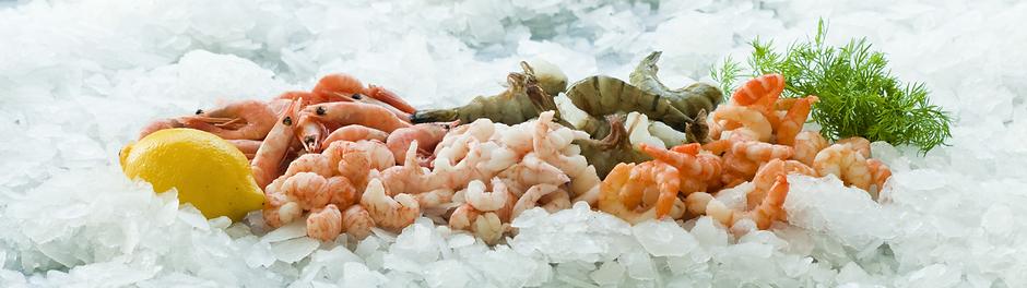 amiral seafood 1