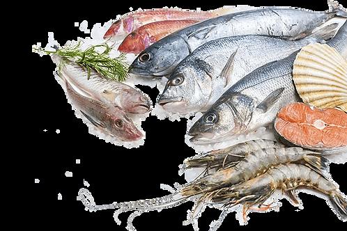 poissonnerie-écailler-traiteur- plateaux de fruits de mer- huîtres- crustacés-la-passion du gout-fumet de poissons