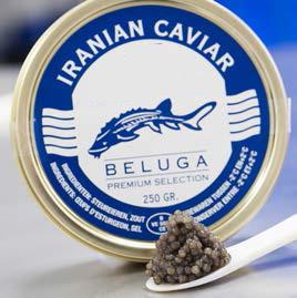 Caviar beluga-caviar-plaisir