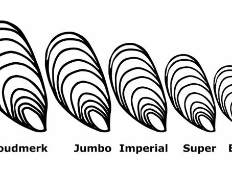 Quelle est la différence entre les appellations Jumbo et Imperial ?