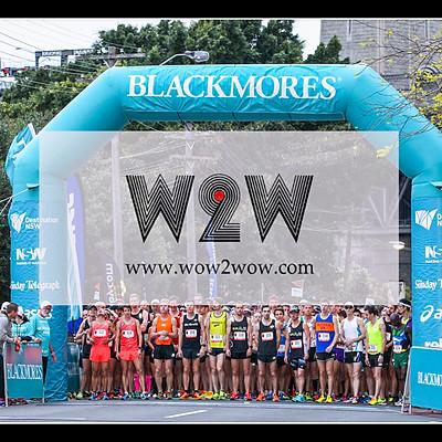 Blackmore Sydney Running Festival 2016 (HM 21km Start)