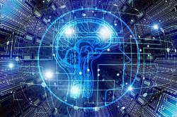 Brain (digital transformation)