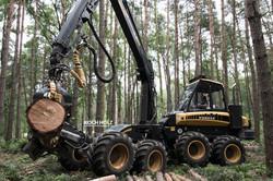Harvestor_Koch Holz