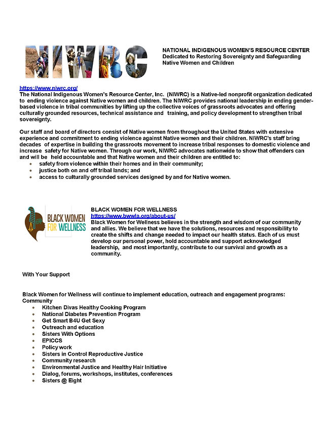 DonorOrganizationInformation_Page_2.jpg