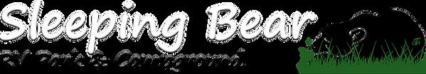 Website Logo #9.png