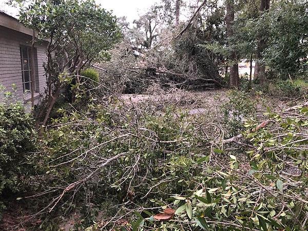 Storm damage6.jpg