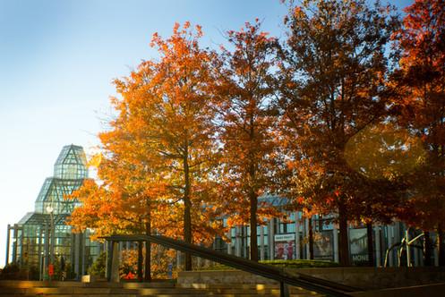 National Art Gallery, Ottawa