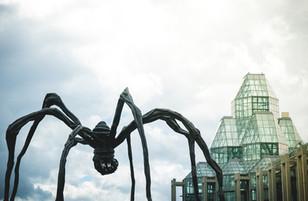 Maman in Ottawa, National Art Gallery