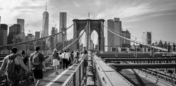 Empire State BW-14